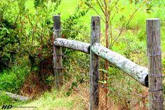 Country fence line by Adam-Schoenwald.deviantart.com on @DeviantArt