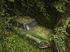 American artists Peter Lippman spent two years to find out places in forests where old cars rusts. In the series Paradise Parking photographer shows how nature takes over abandoned creations of human hands, how lying for decades old cars, overgrown with moss and ivy entangled, become a harmonious part of the surrounding space.
