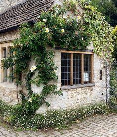 Älskar Storbritannien hus i Castle Combe. Jag tror nästan alla hus där var tokgamla och väldigt väldigt vackra.  #greatbritain #storbritannien #castlecombe #blomma #ros #moringarstäppa