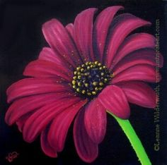 Gerbera flower, like  the tight focus that doesn't allow the whole flower head on the canvas