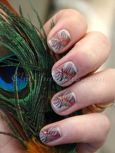 Feathers by ChitChatNails