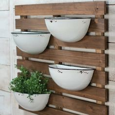 Our Enamel Pot Wall Planter features a fresh and functional design for your wall decor. You'll love its demi-cup design against a rustic wood pallet wall mount! Metal Wall Planters, Hanging Planters, Diy Wall Planter, Rustic Planters, Outdoor Wall Planters, Concrete Planters, Steel Planter, Vertical Planter, Recycled Planters