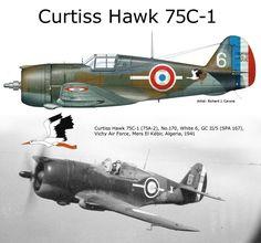 "Curtiss Hawk 75C-1 - ""Bianco 6"" GC II/5 , N.170 - Aviazione Di Vichy, Mers El Khebir, Algeria 1941"