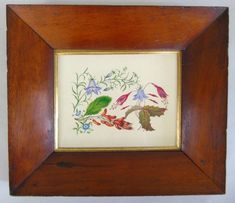 This is a beautiful 19th botanical study of harebells, fuchsia, leaves and berries, expertly painted in watercolours around 1850. Antiques Atlas Watercolour Paintings, Watercolours, Berries, Study, Leaves, Antiques, Frame, Pictures, Beautiful