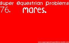 Super Equestrian Problems : 1 of 7 Equestrian Quotes, Equestrian Problems, Crazy Quotes, Funny Quotes, Smile Quotes, Song Quotes, Wisdom Quotes, Funny Memes, Hilarious