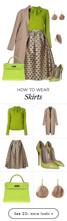 """""""outfit 7732"""" by natalyag on Polyvore featuring D.Exterior, Mary Katrantzou, Christian Louboutin, Alexander Wang, Hermès and Brooks"""
