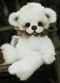 Tivoli, 10 inch baby bear made from white faux fur. Has wired arms and a gorgeous face. Can stand if balanced.