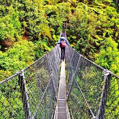 AUSTRALIA: Crossing the suspension bridge at Montezuma Falls, on Tasmania's West Coast. Montezuma Falls is Tasmania's highest waterfall, and is located near the peaceful town of Rosebery. Cool Countries, Countries Of The World, Aztec Emperor, Places To Travel, Places To See, Town Names, Montezuma, Suspension Bridge, Tasmania