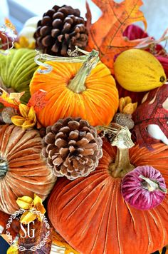 5 BEAUTIFUL WAYS TO STYLE PUMPKINS-1-pumpkins-on-pedestal-cake-plate- stonegableblog.com