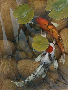 Terry Gilecki Limited Edition Giclee on Canvas Casting Some Light (AP) Koi Art, Fish Art, Koi Kunst, Koi Painting, Koi Fish Tattoo, Koi Fish Pond, Japanese Koi, Beautiful Fish, Art Archive