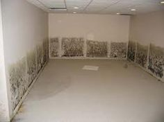 Marvelous How To Clean The Flooded Basement Mold?   Http://waterproofinginbasement.com