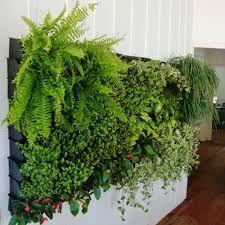 Resultado de imagem para jardins verticais portugal