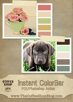 CoffeeShop free action for Photoshop and PSE:  Make an instant Color Palette from your favorite images!