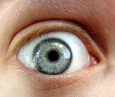 12 things your eyes reveals about your health: Eyes aren't just the window to your soul — they also offer a glimpse into your health Good Housekeeping, How To Stay Healthy, Window, Diet, Windows, Banting, Diets, Per Diem, Food