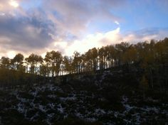 Nothing as pretty as a Colorado sunset over the aspens #DTNFallContest