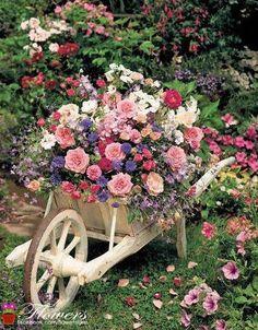 Die Natur als Vorbild genommen...Kleidung und Schuhe haben jetzt Blumenprints
