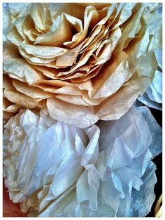 Coffee Filter Flowers: Even a close up view can still fool the eye!