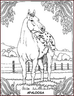 Pony Coloring Pages | Animal Coloring Pages | Horse coloring pages ...