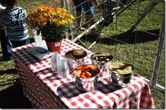 "Animal feeding table for Farm party ""petting zoo"""