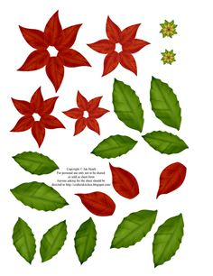 Poinsetta 3D Sheet photo 4bpblogspotcomscreencapture2010-11-30-8-20-55.png