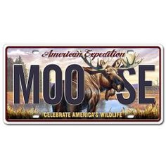 Old Moose Trading Co (With images) Moose, Moose decor