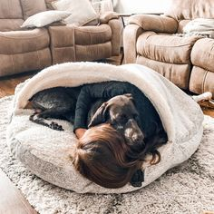 The Cozy Cave Dog Bed is perfect for nervous or chill-prone dogs that need a calming and warm dog bed bed to help improve their rest. Big Dog Beds, Cute Dog Beds, Big Dogs, Cute Dogs, Dogs And Puppies, Puppies Tips, Puppy Beds, Funny Dogs, Cozy Cave Dog Bed