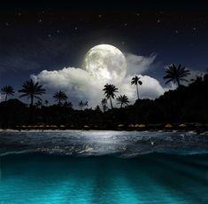 Beach in the moonlight Self-Adhesive Wall Mural - Themes Ocean At Night, Beach At Night, Stars At Night, On The Beach, Beach Images, Beach Pictures, Art Pictures, Moon Pictures, Night Aesthetic