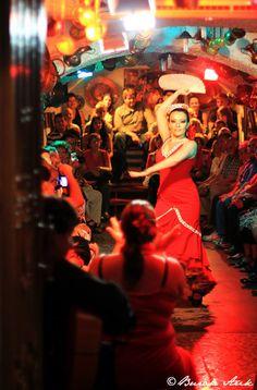 Bailaores de flamenco / Flamenco performers