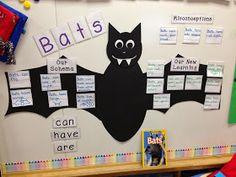 A Spoonful of Learning: Bats, Bats, Bats! (Part 1)