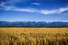 Fagaras Mountains, Romania (Green  Lemon / Romania) #Canon EOS 6D #landscape #photo #nature
