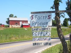 amish produce - their farms are sustainable & organic!