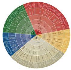 koło dopasowania ziół do dolegliwości / źródło: www.herbiness.com Periodic Table, Herbs, Nutrition, Diet, Vegan, Health, Cheat Sheets, Meal Planning, Food