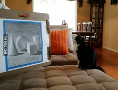 My cat sits and watches my paintings for my art class for hours, is this normal?