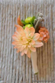 Grooms boutonniere. Something like this. A dahlia that matches the bridal bouquet.