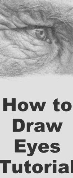 zeichnung Learn to draw eyes with this pencil drawing lesson Blue Drawings, Cartoon Drawings, Pencil Drawings, How To Draw Hair, Learn To Draw, Black Peel Off Mask, Loose Wedding Hair, Eye Drawing Tutorials, Draw Eyes