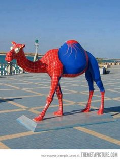Spiderman Camel… only in abu dhabi