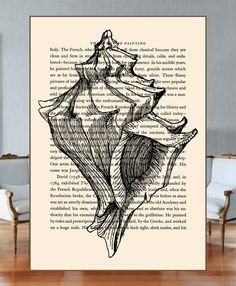 simple conch Line Art Drawings, Art Sketchbook, Seashell Art, Drawings, Shell Drawing, Art, Life Art, Sea Life Art, Book Art
