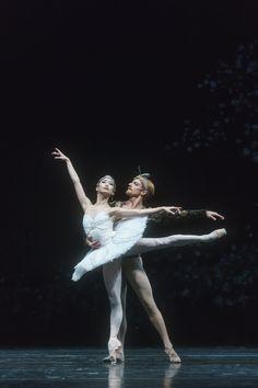 Akane Takada and Steven McRae in Makarova's La Bayadere ph. Shall We Dance, Just Dance, Teresa Wright, La Bayadere, Paris Opera Ballet, Royal Ballet, Ballet Beautiful, Ballet Dancers, Belly Dance