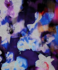 Blue Falling Iris Print  - paul smith