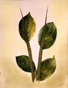 Green Leaves, Natur Illustration Kunstdruck, von PaperArcsArt auf DaWanda.com