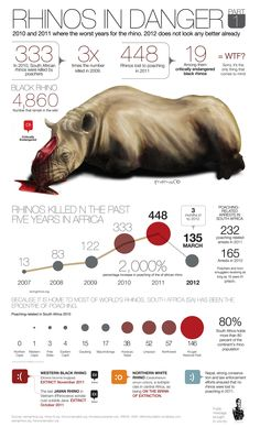 Infographics I am doing to spread the wor on endangered animals Rhino Tattoo, Rhino Logo, Rhino Poaching, Rhino Beetle, Rhino Art, Save The Rhino, Non Plus Ultra, Rhinoceros, Animals