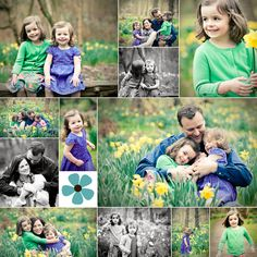 family mini session in the daffodils