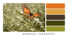 The Ochsners: Photo Color Palettes, Day 1