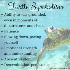 Turtle Totem The turtle symbolism is characterized by the association with the Earth and earth symbols of groundedness and patience: Turtle Spirit Animal, Animal Spirit Guides, Turtle Symbolism, Animal Symbolism, Turtle Meaning, Earth Symbols, Mayan Symbols, Viking Symbols, Turtles