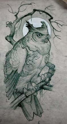 Owl Tattoo Design Ideas The Best Collection Top Rated Stylish Trendy Tattoo Designs Ideas For Girls Women Men Biggest New Tattoo Images Archive Owl Tattoo Design, Tattoo Design Drawings, Bird Drawings, Animal Drawings, Tattoo Designs, Drawing Animals, Pencil Drawings, Animal Sketches, Drawing Sketches