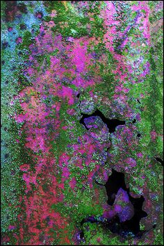 ~~Rust and Lichen | color and texture abstract by Leenda K~~