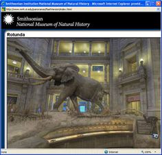 Smithsonian National Museum of Natural History - This comprehensive virtual tour allows the visitor to take a virtual, self-guided, room-by-room walking tour of the whole museum. The visitor can navigate from room to room either by using a floor map or by following blue arrow links connecting the rooms. Camera icons indicate hotspots where the visitor can get a close-up on a particular object or exhibit panel.