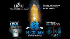 http://www.thelimuteam.com/  Limu David Box company Fucoidan california florida join bmw