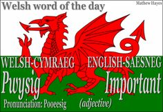 #Welsh Word of the Day: Pwysig/ #Important