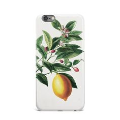 Yellow Lemon Fruits Hard Case Cover For Apple iPhone 4 4S 5 5S 5c SE 6 6S 7 Plus #Apple